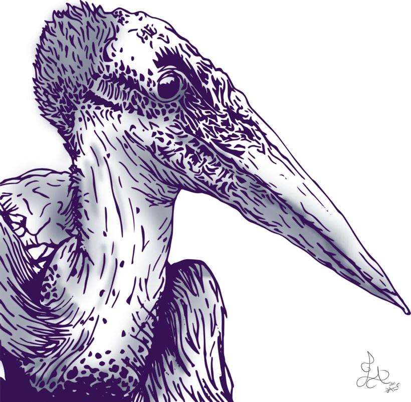 Pelican Line  2