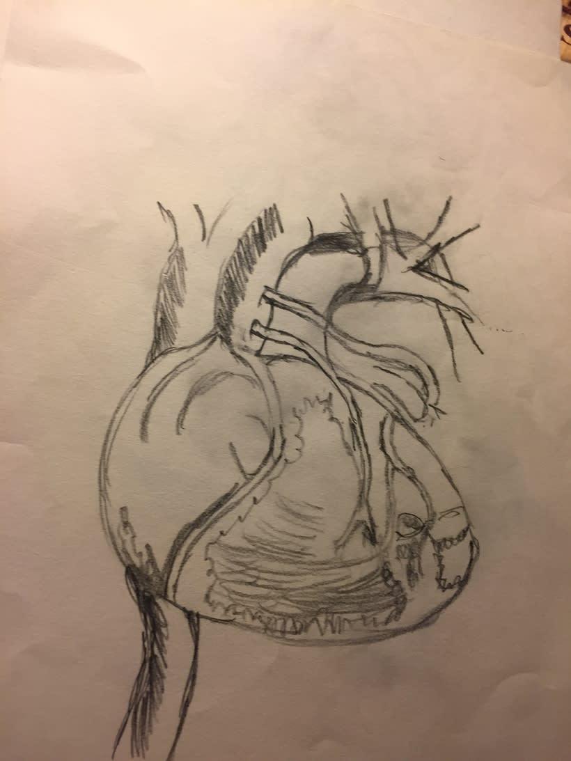 Ilustración 6