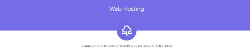 Hosting Premium Barato - CloudLinux, LiteSpeed, DDOS Protection, Discos SSD 1