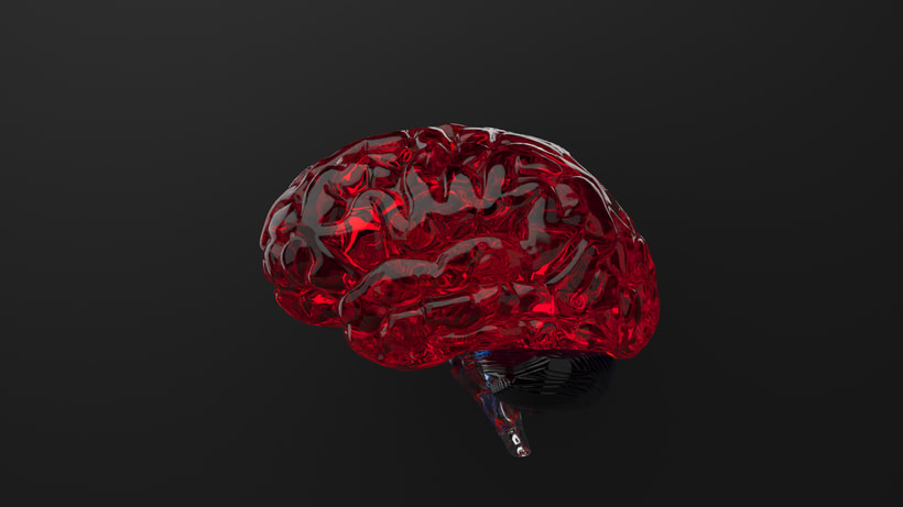 Brain 0
