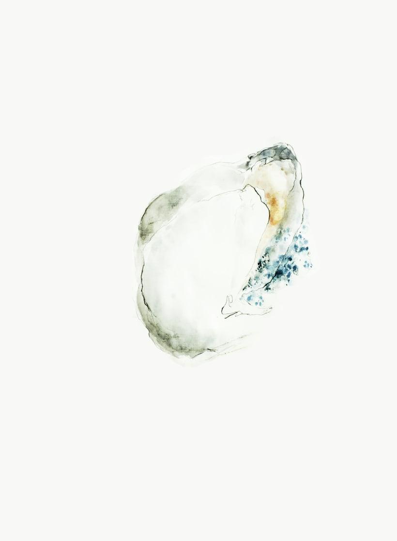 """Ilustraciones para el CD """"Hasta precisar el aire"""" de Kamankola 0"""