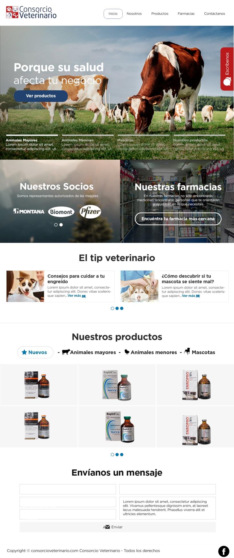 Mi Proyecto del curso: Diseño web: Be Responsive! -1