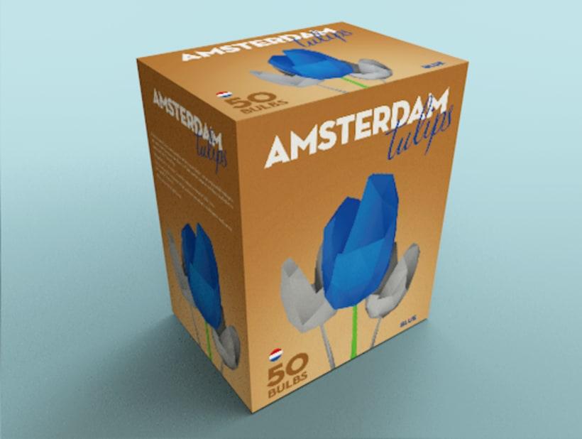 Disseny pack tulipans Amsterdam Tulips 1