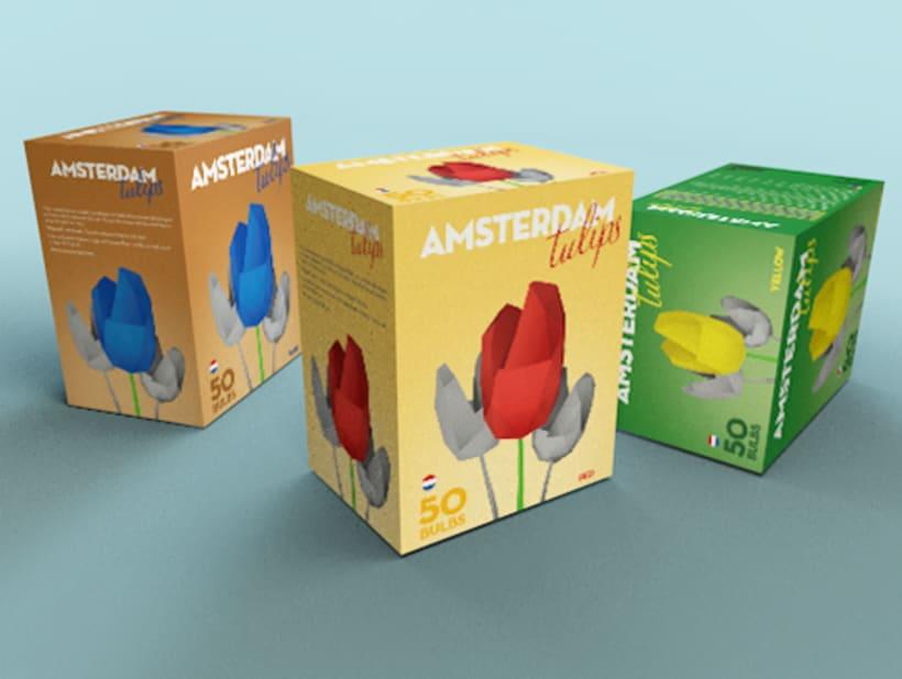 Disseny pack tulipans Amsterdam Tulips 2