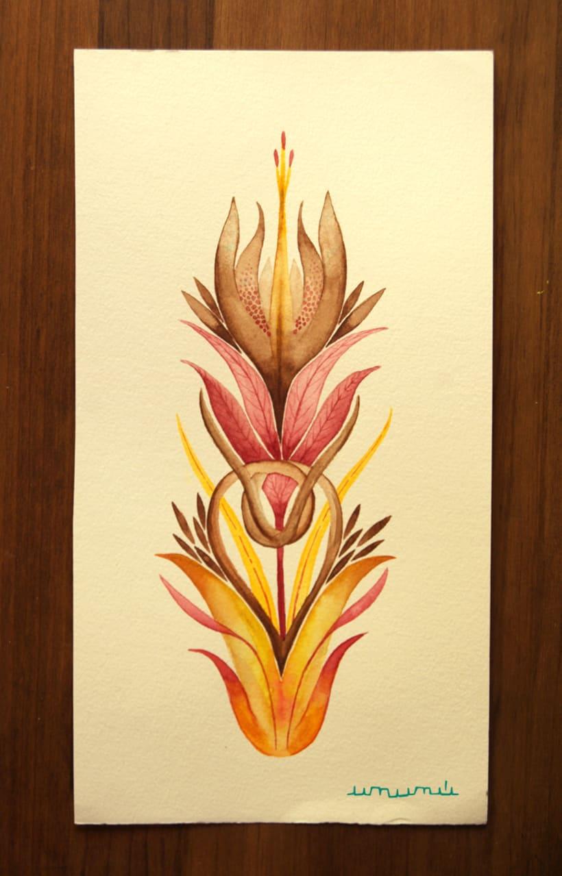 Ka'avo, simetría orgánica 1