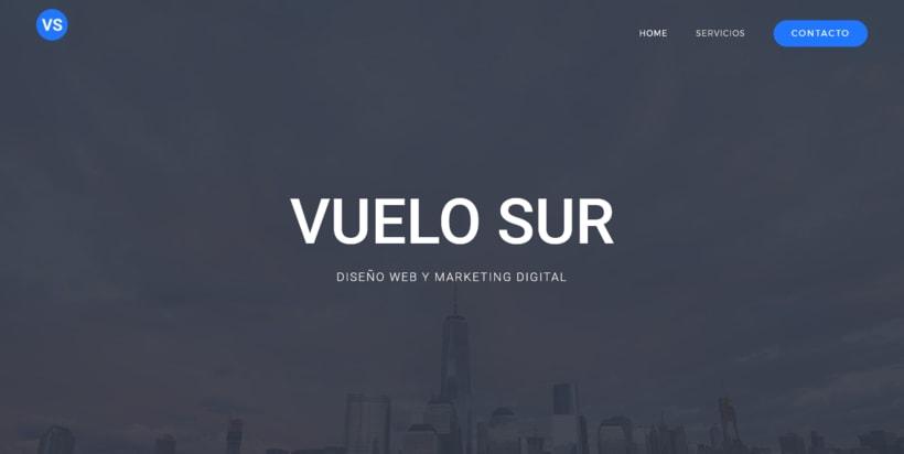 Vuelo Sur: Agencia de Diseño Web y Marketing Digital 0