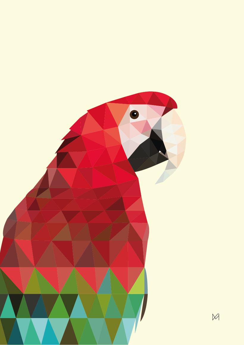Ilustración Macaw -1