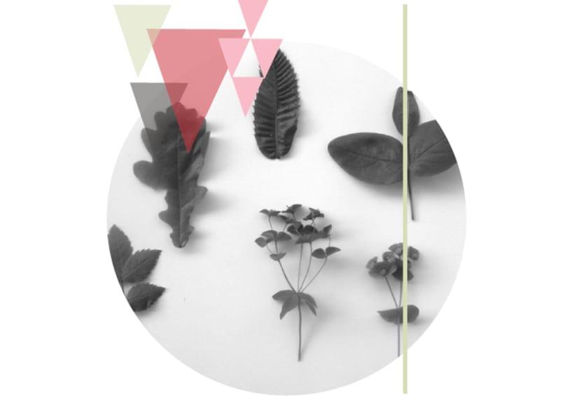 Collection : Botanica 0