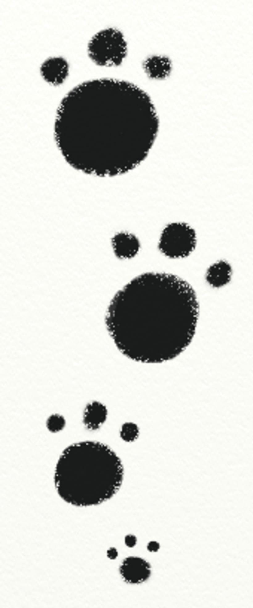 Blanco y Negro (Libro Ilustrado) 12 Ilustraciones 1