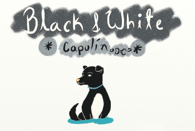 Blanco y Negro (Libro Ilustrado) 12 Ilustraciones 9