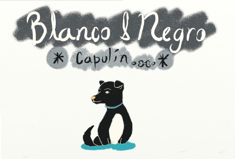Blanco y Negro (Libro Ilustrado) 12 Ilustraciones 10