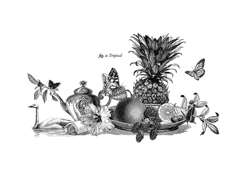 Ilustraciones para Puch Room. 2