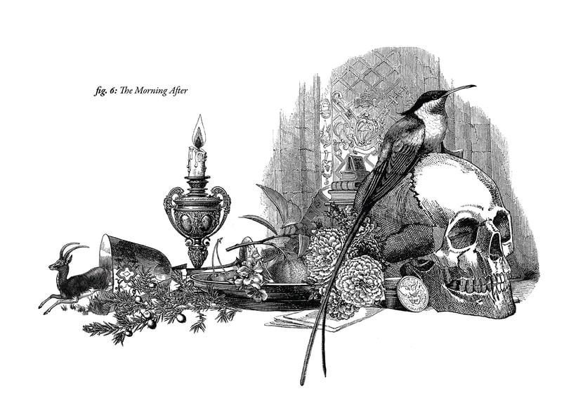 Ilustraciones para Puch Room. 6