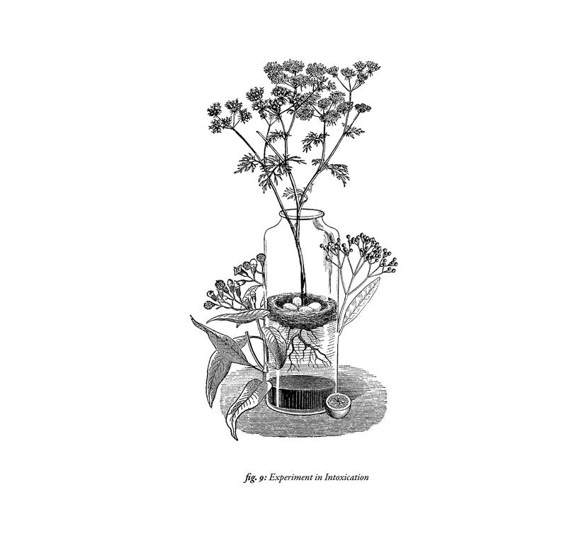 Ilustraciones para Puch Room. 8
