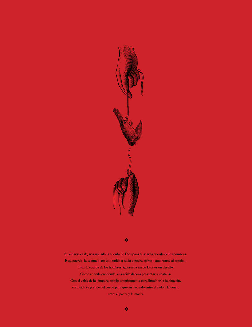 Caída del búfalo sin nombre - Collage 5