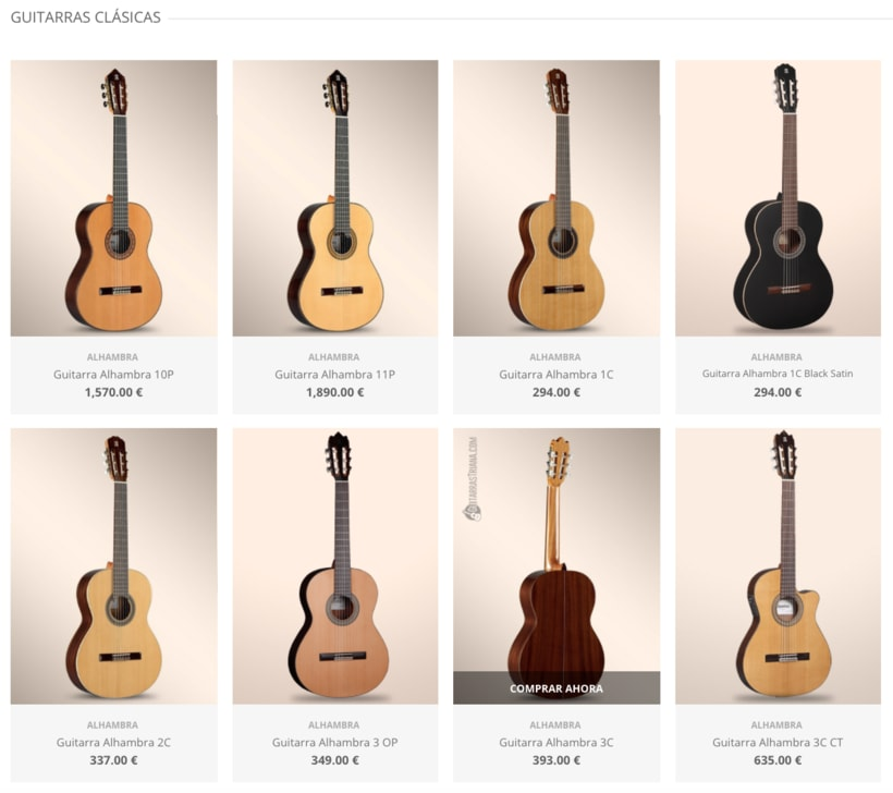 Desarrollo Web del E-commerce de GuitarrasTriana.com 1