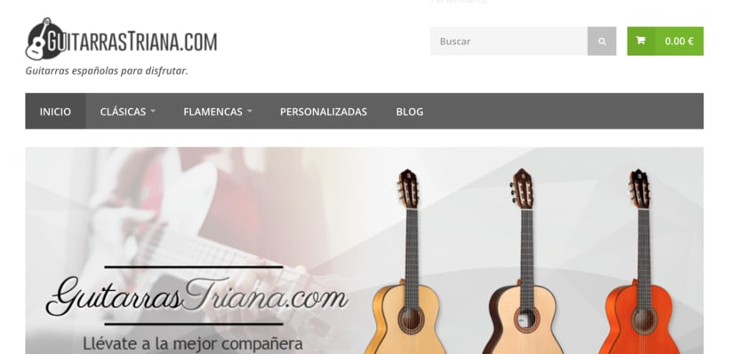 Desarrollo Web del E-commerce de GuitarrasTriana.com 2