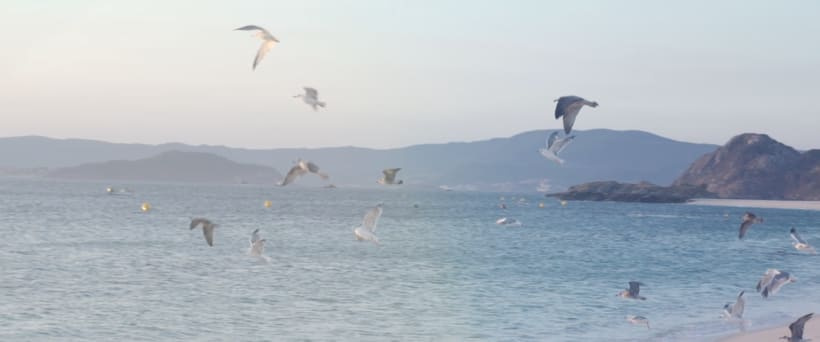 Isla Do Faro - Videopoema 0