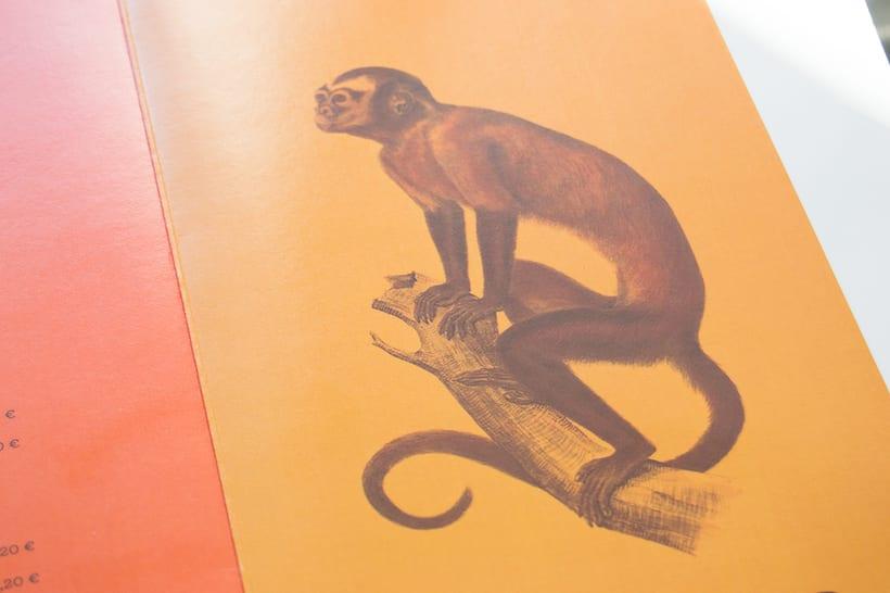 Cartas Los Monos 4