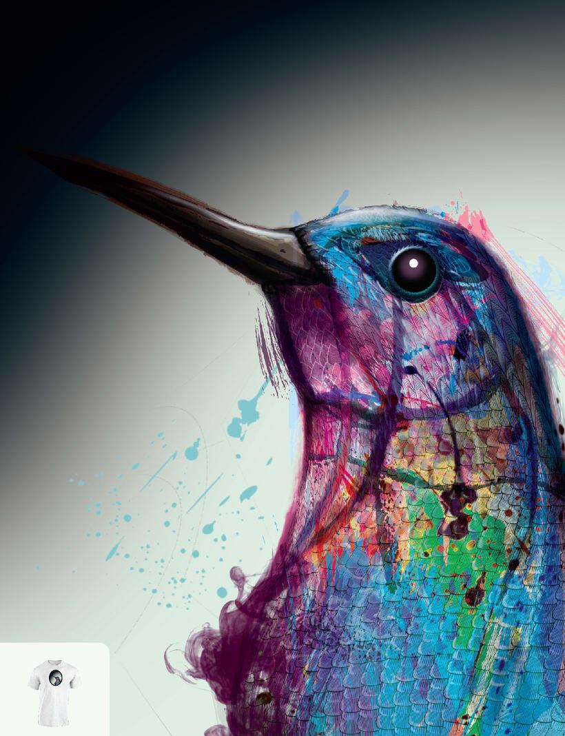 HUMMINGBIRD -1