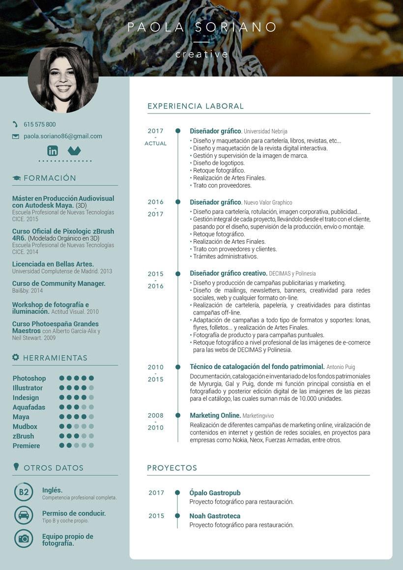 Mi Curriculum en infografía 3