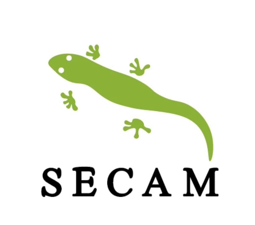 Logotipo Secam 0