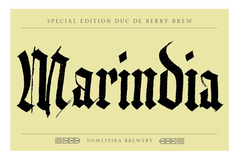 Marindia - mi proyecto de góticas potentes 9