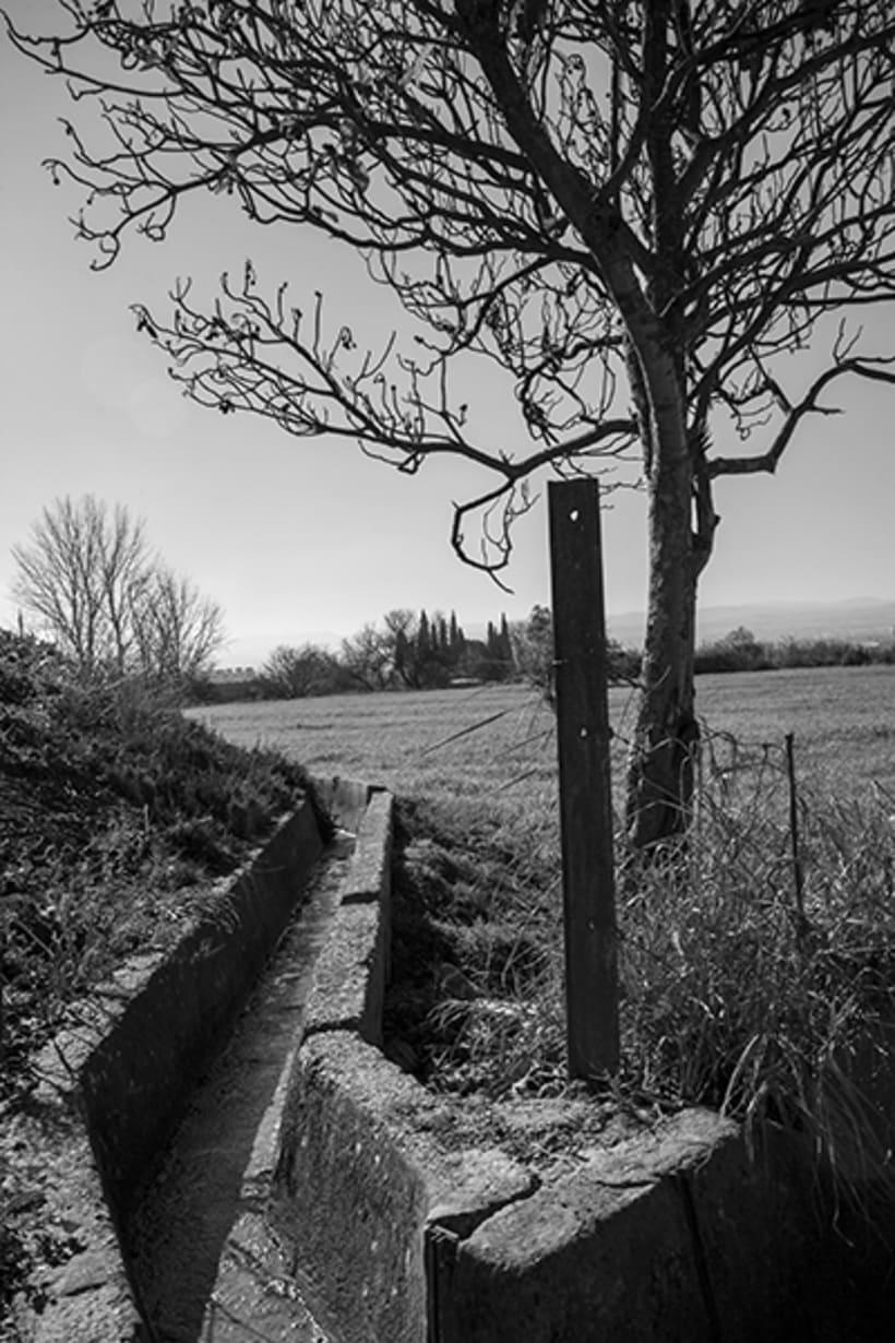 Fotografía en Blanco y negro 0