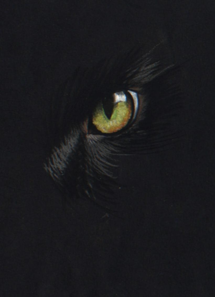 Edgar Allan Poe 4