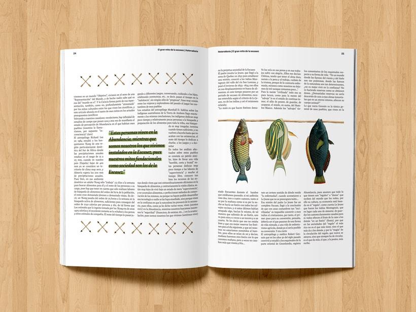 Revista Heterodoxia 7