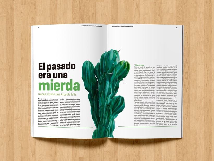 Revista Heterodoxia 8