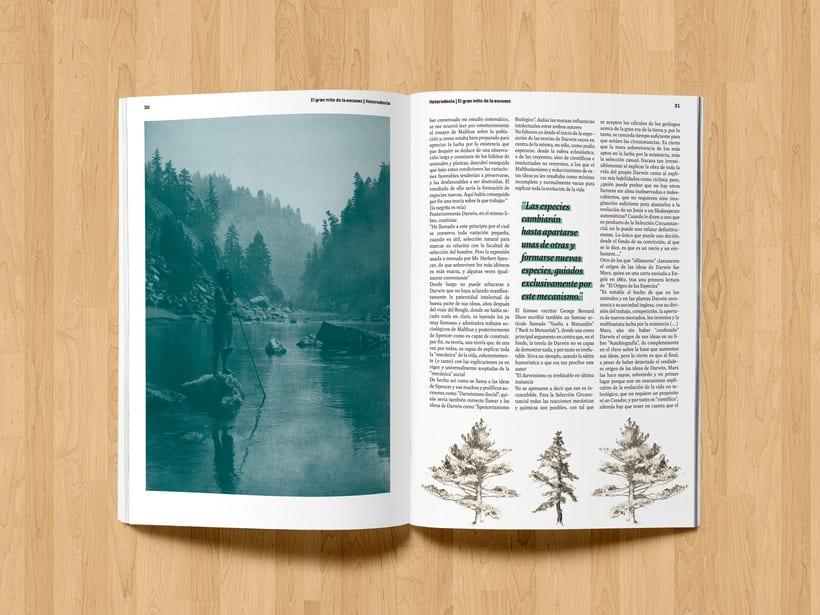 Revista Heterodoxia 9