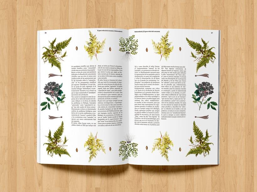 Revista Heterodoxia 14