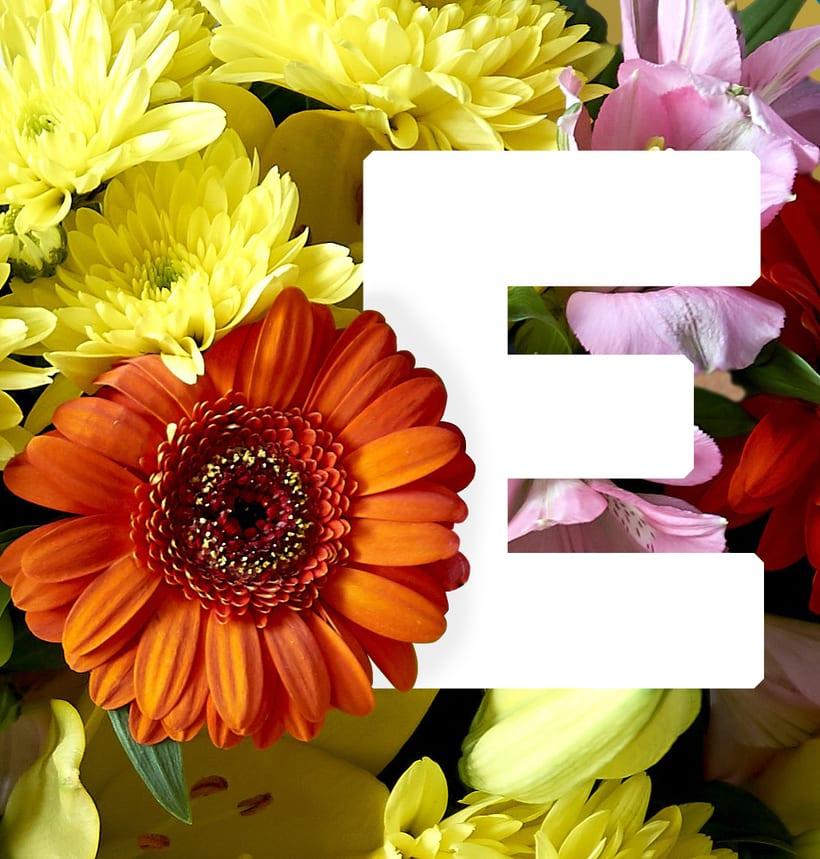 Título: Fleurs. | Proyecto: Yo y las ideas. 2