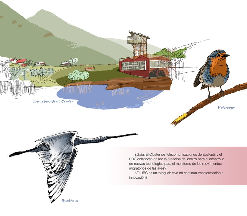 Urdaibai Bird Center (libro) 5