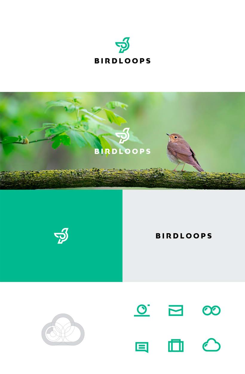 BIRDLOOPS ™ - Brand Identity 0