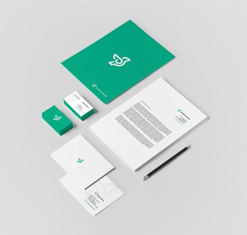 BIRDLOOPS ™ - Brand Identity 6