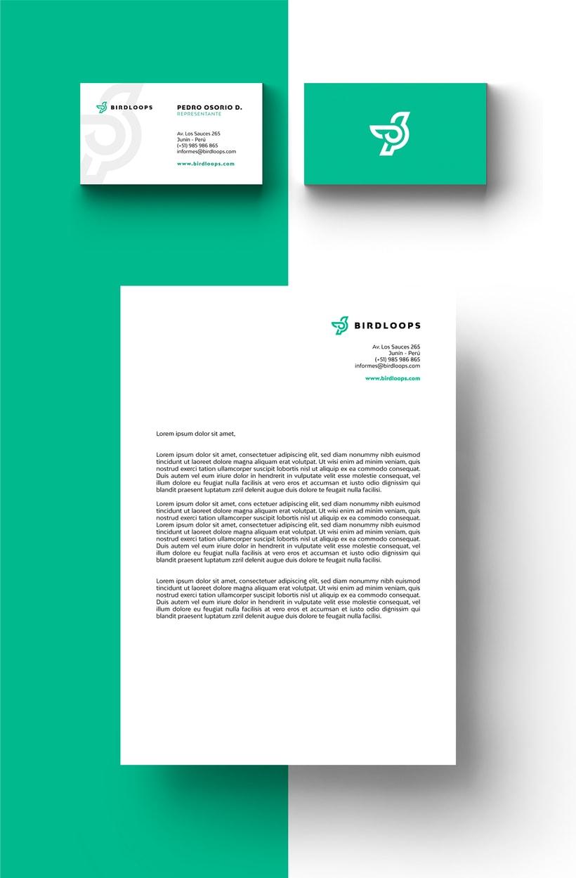 BIRDLOOPS ™ - Brand Identity 5