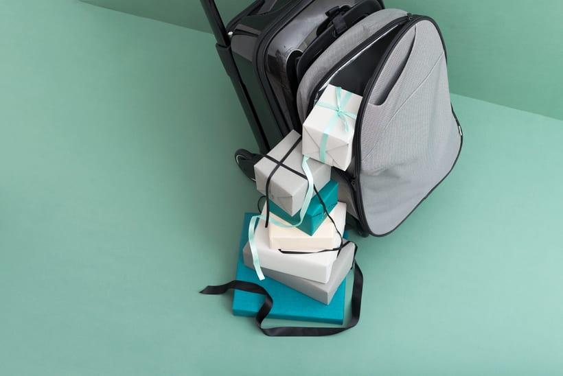 Bugaboo Luggage para CBDA 7