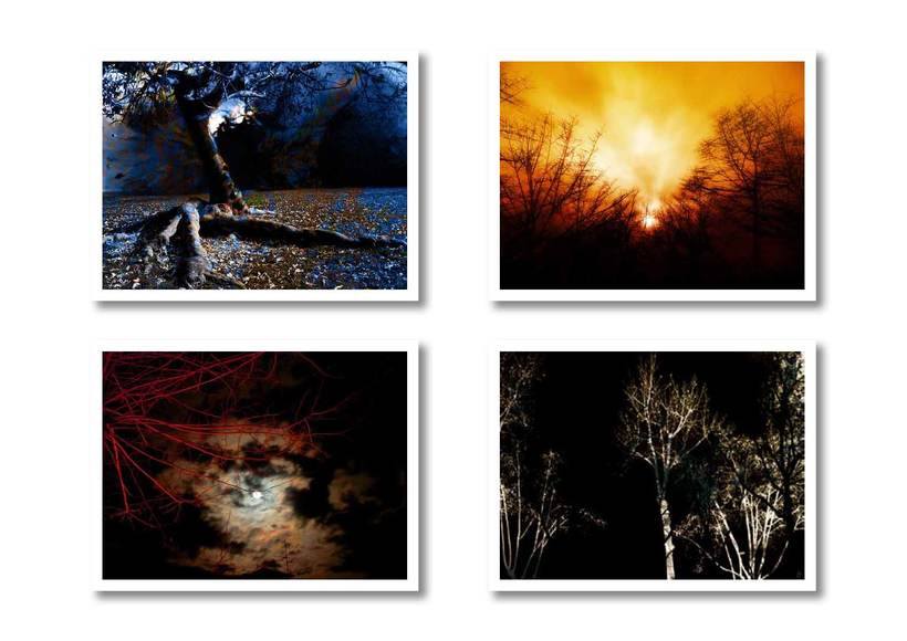 Fotomontajes  0