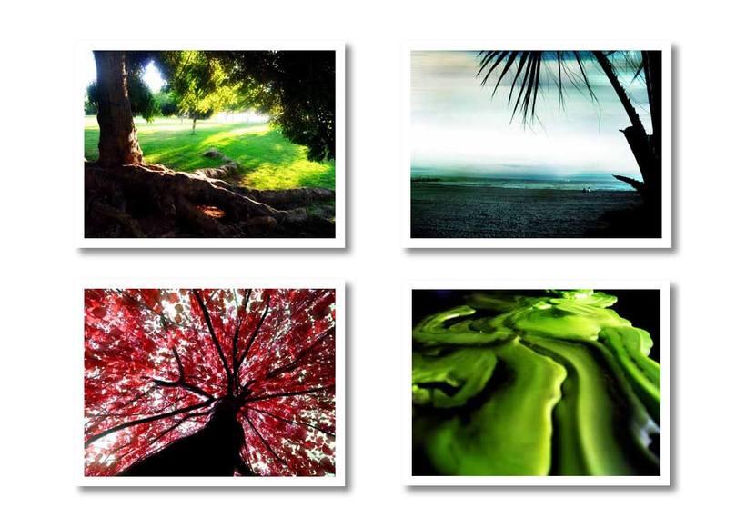 Fotomontajes  2