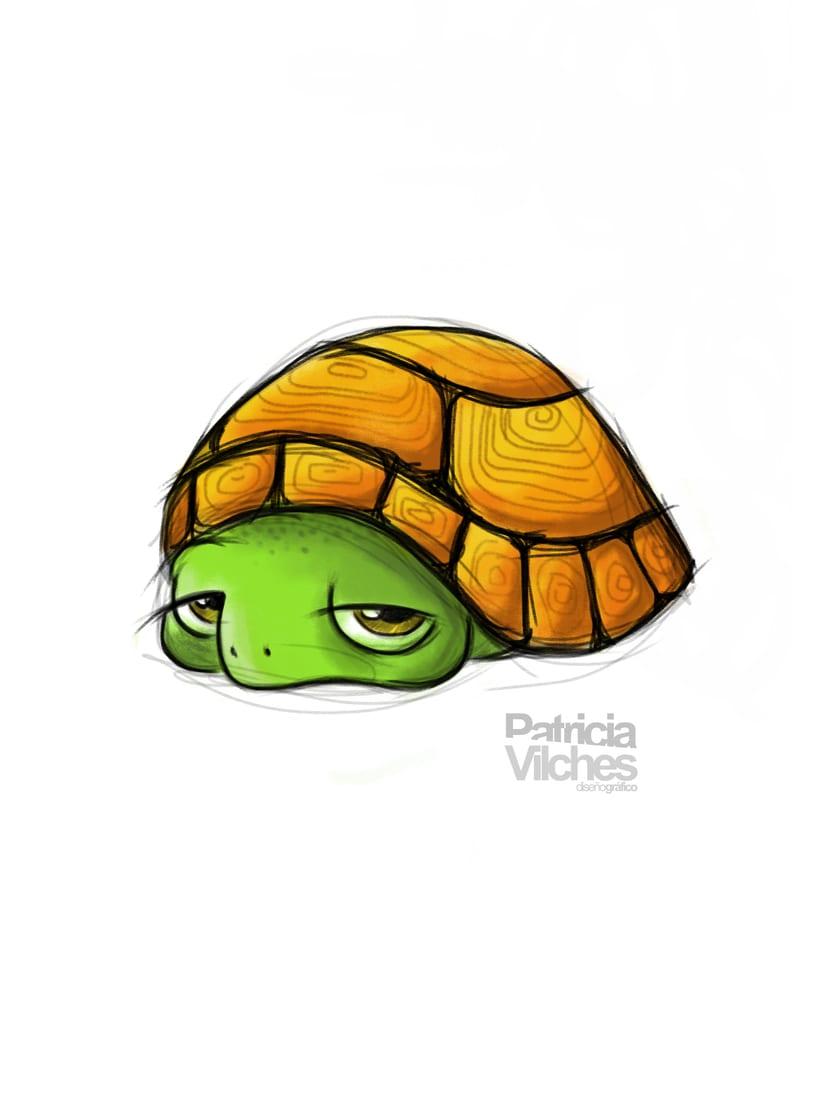 Ilustración Tortuga -1