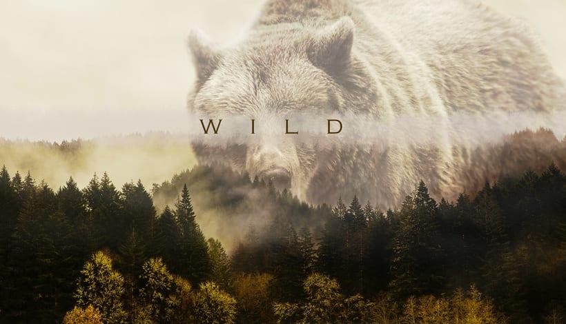 Wild -1