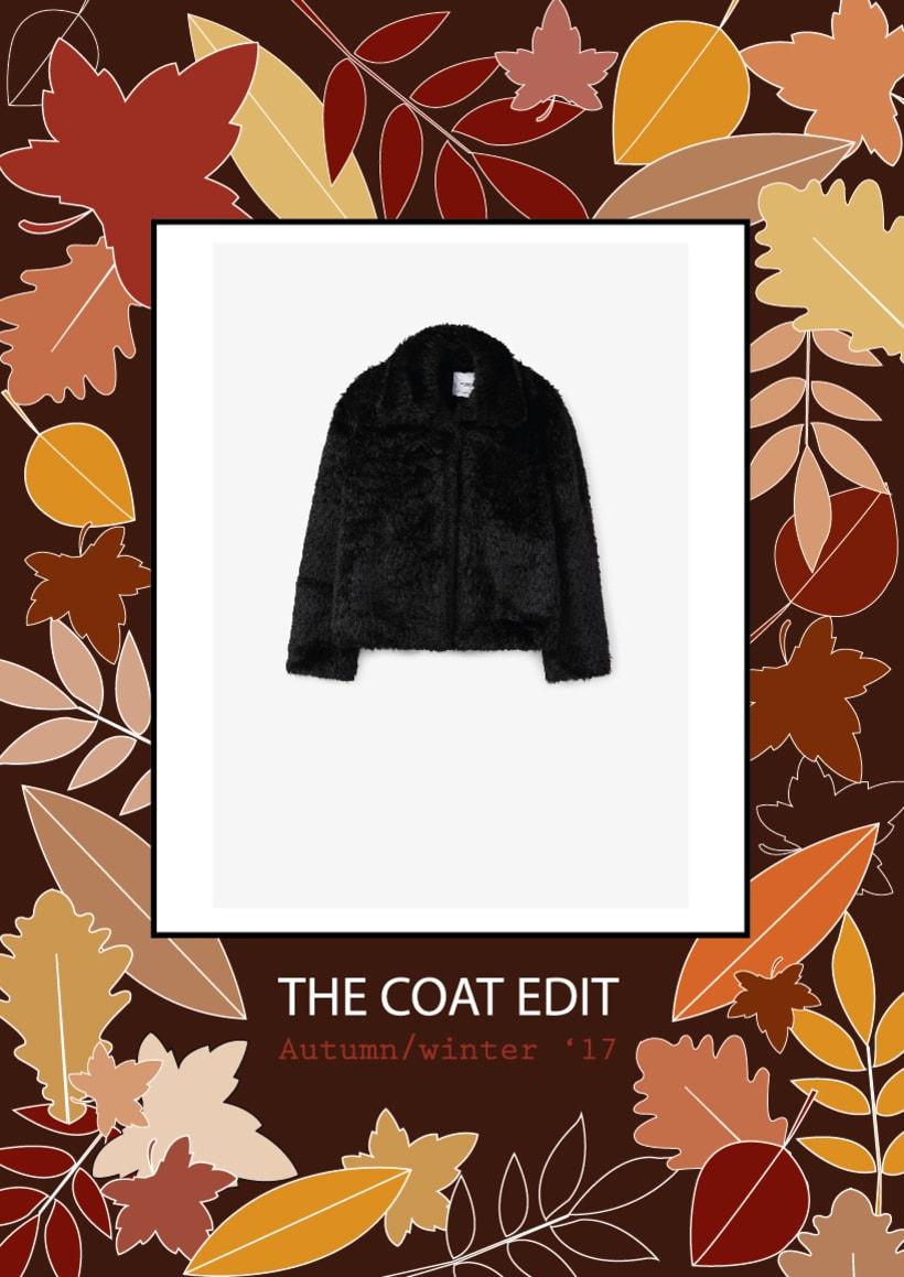 The coat edit 0
