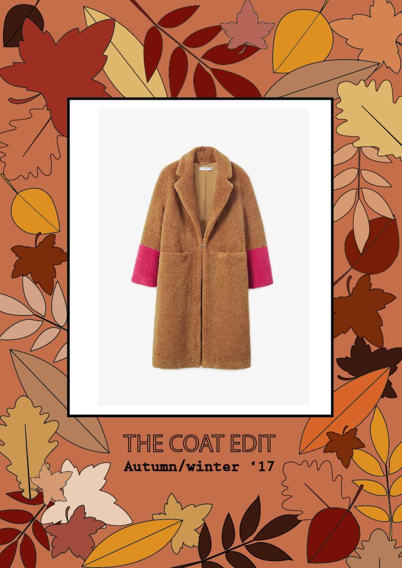 The coat edit 1