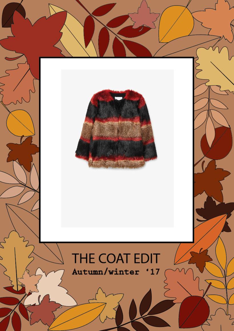 The coat edit 2