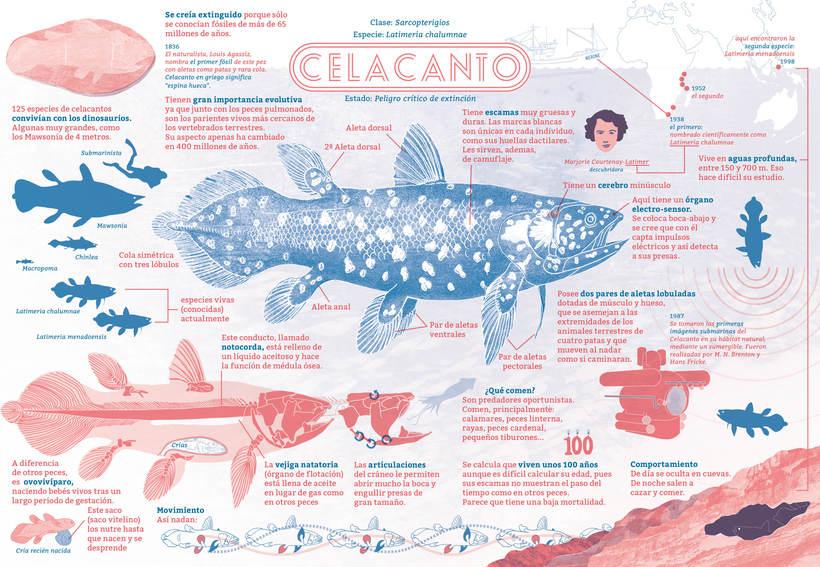 EL ENCANTO DEL CELACANTO (para revista ¡La leche! #4) 0