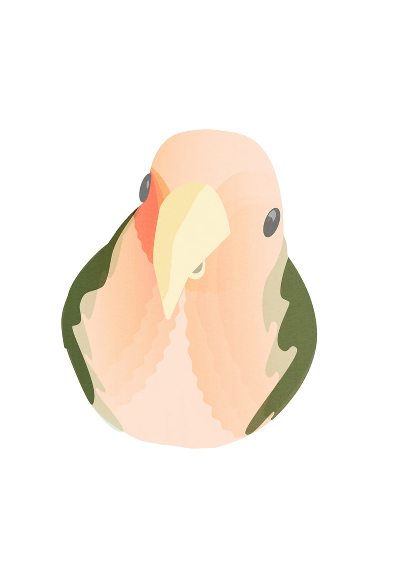 The Bird -1