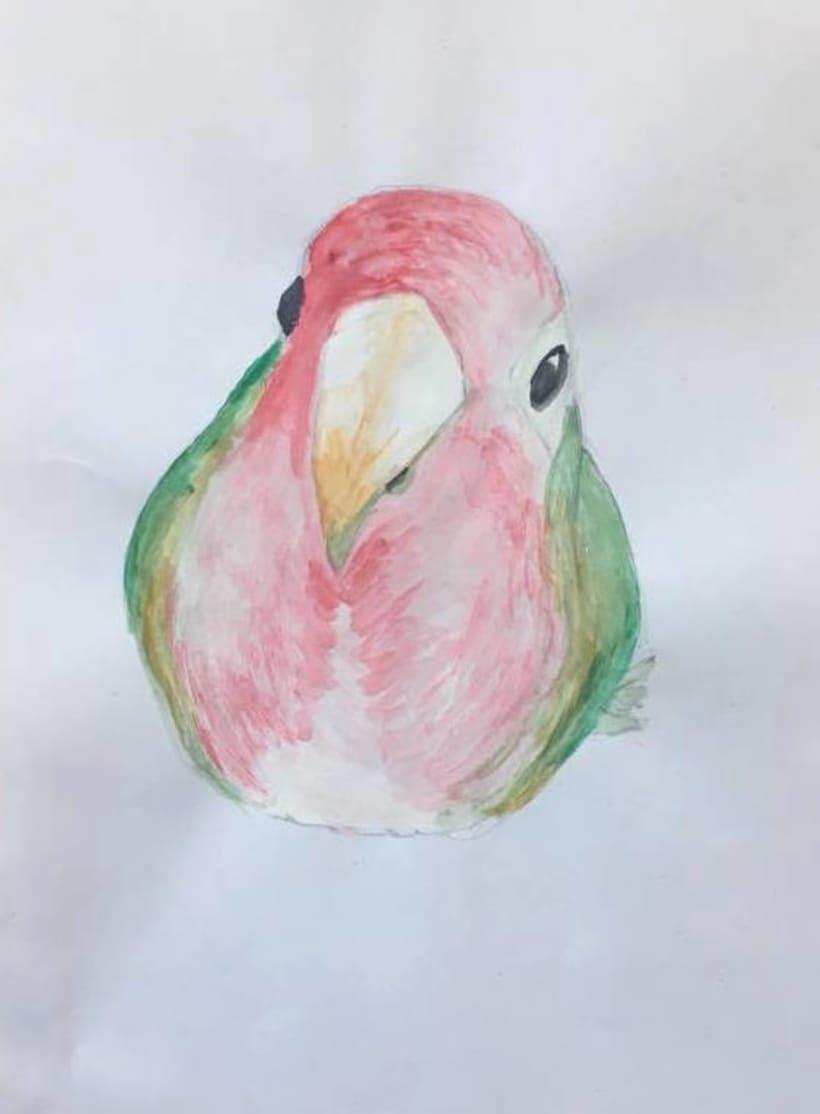 The Bird 0