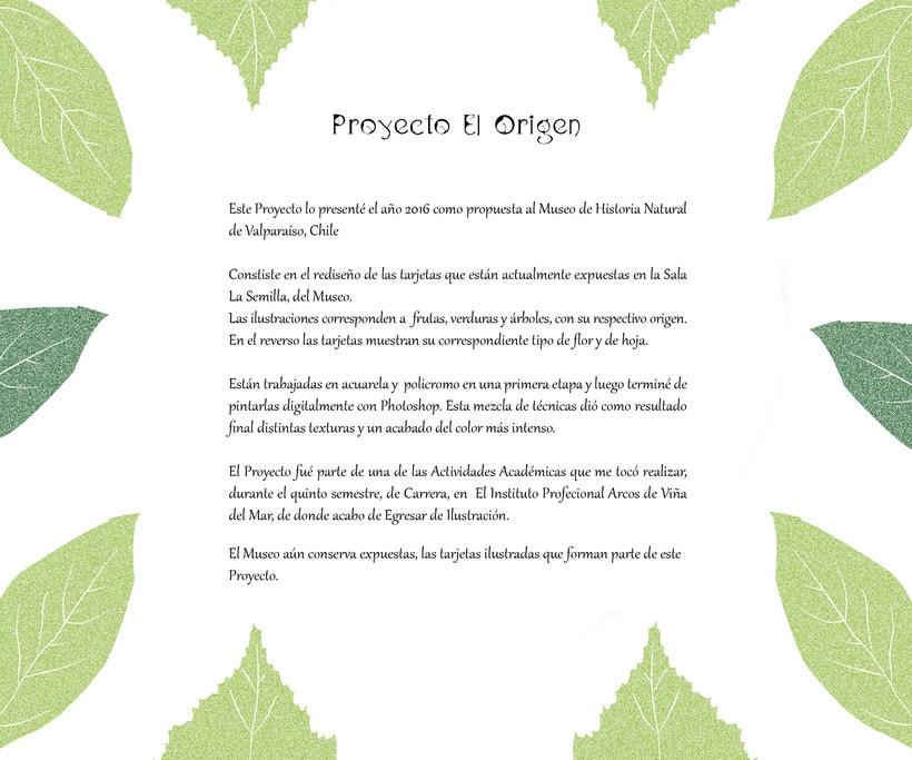 Proyecto El Origen  -1